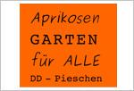 Aprikosengarten Dresden